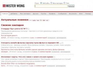 mister-wong